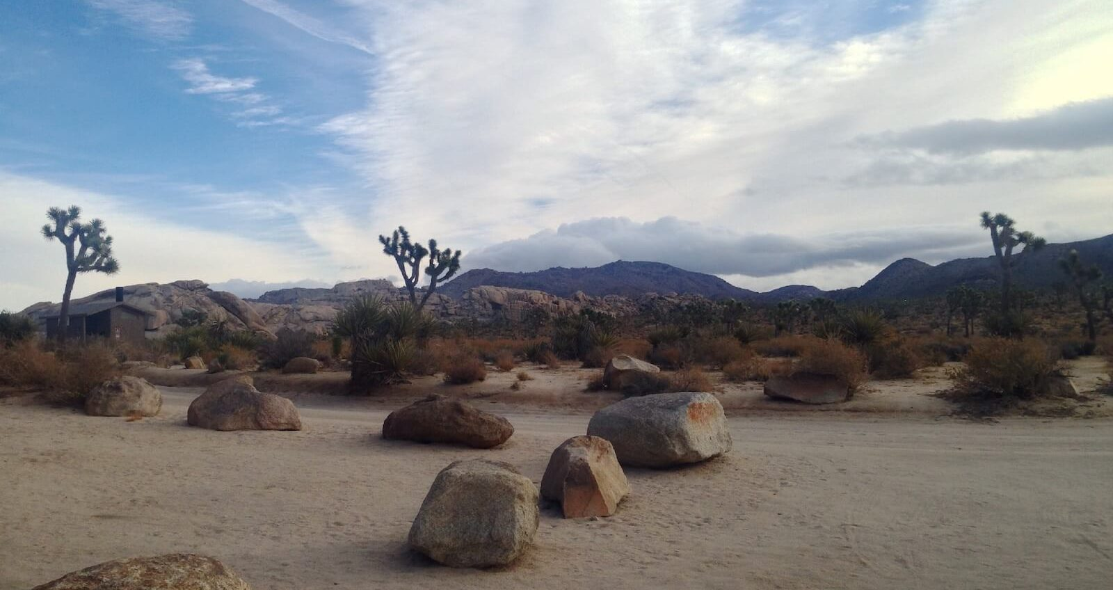 Joshua-Tree-California